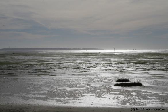 Bassin d'Arcachon et ses lumières